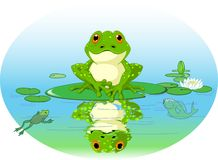 Frog. Sitting on Water lily leaf stock illustration