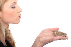Frog. A gorgeous young blond woman kissing a frog Stock Images