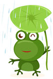 Frog. Illustration of isolated cartoon frog with leaf on white Royalty Free Stock Images