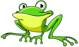 Frog. Cartoon illustration of frog character. Isolated on white background vector illustration