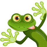 Frog. Illustration, merry green frog with greater eye Stock Image