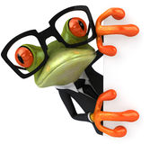 Frog. Cute little frog , 3D generated Royalty Free Stock Image
