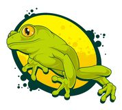 Frog. Sitting on a yellow background Royalty Free Stock Photos