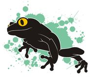 Frog. On blots background in Stock Images
