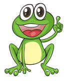 A frog Stock Photo