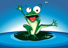 Frog. Crazy dancing frog on the water Royalty Free Stock Images