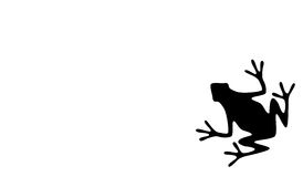 Frog. A Silhouette of a Black Frog on White Background Stock Photos