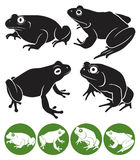 Frog. The figure shows a frog Stock Image