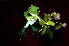Frog. Porcelean Frog Royalty Free Stock Image