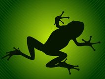Frog. Silhouette on green tropical leaf stock illustration