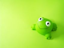 Free Frog Royalty Free Stock Photography - 4752937