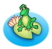 Frog. Color illustration of frog sitting on water-lily Stock Photos