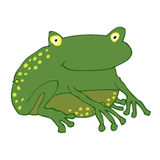 Frog. A big green frog vector illustration royalty free illustration