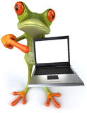 Frog. Cute little frog looking at the camera, 3D generated Stock Image