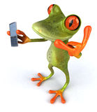 Frog. Cute little frog looking at the camera, 3D generated stock illustration
