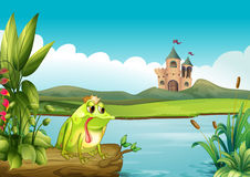 A frog above a floating trunk across the castle Stock Image