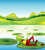 A frog above the waterlily floating at the pond Royalty Free Stock Photo