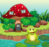 A frog above a waterlily in front of a mushroom house Stock Photo