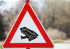 Frog alert Royalty Free Stock Images