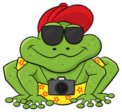 Frog as a tourist with camera and sunglasses Royalty Free Stock Photo