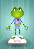 Frog on balance in the gym Stock Photos