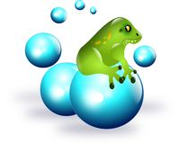 Frog on balls Stock Photography