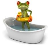 Frog in a bath Stock Photos