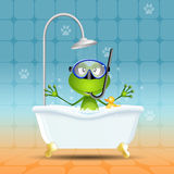 Frog in bath with diving mask Royalty Free Stock Photography