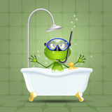 Frog in bath with diving mask Stock Photos