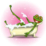 Frog in a bath Royalty Free Stock Photos