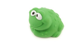 Frog bathing toy. On a white background stock images