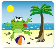 Frog on the beach. Vector illustration of frog with the ball on the beach Royalty Free Stock Photos