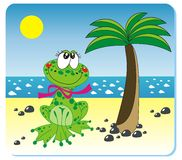 Frog on the beach. Vector illustration of frog with the ball on the beach Stock Photos