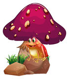 A frog below the giant mushroom Royalty Free Stock Photos