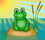 Frog with big eyes Stock Photo