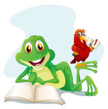 A frog and a bird reading Stock Photos