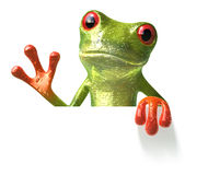 Frog with a blank sign royalty free stock photography