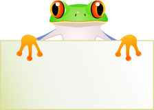 Frog with blankn sign Stock Images