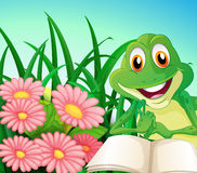 A frog with a book at the garden Stock Image