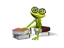 Frog and books Stock Photography