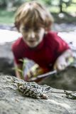 Frog and a Boy. A small boy approaches a Leopard Frog on the bank of the Eno River in North Carolina Stock Photo