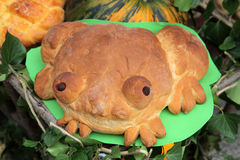 Frog bread Royalty Free Stock Photography