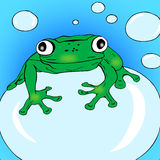 Frog on a bubble. stock photos