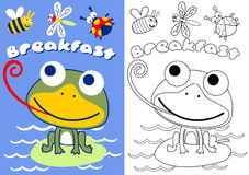 Frog and bugs. Coloring book of frog and bugs, vector cartoon stock illustration