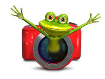 Frog in the camera Stock Photo