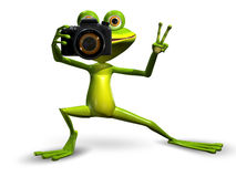 Frog with a Camera Stock Image