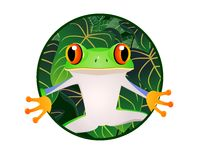 Frog cartoon Stock Photography