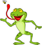 Frog cartoon with fly. Illustration of frog catching fly Stock Photo