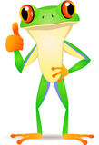 Frog cartoon with thumb up Stock Image