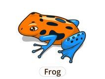 Frog cartoon vector illustration Stock Photography